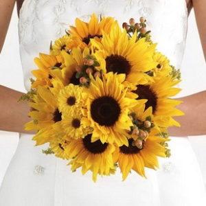 Подсолнух. Яркий и позитивный цветок, наполняющий радостью всех кто его увидел. Этот цветок привезенный из Южной Америки участниками одной из