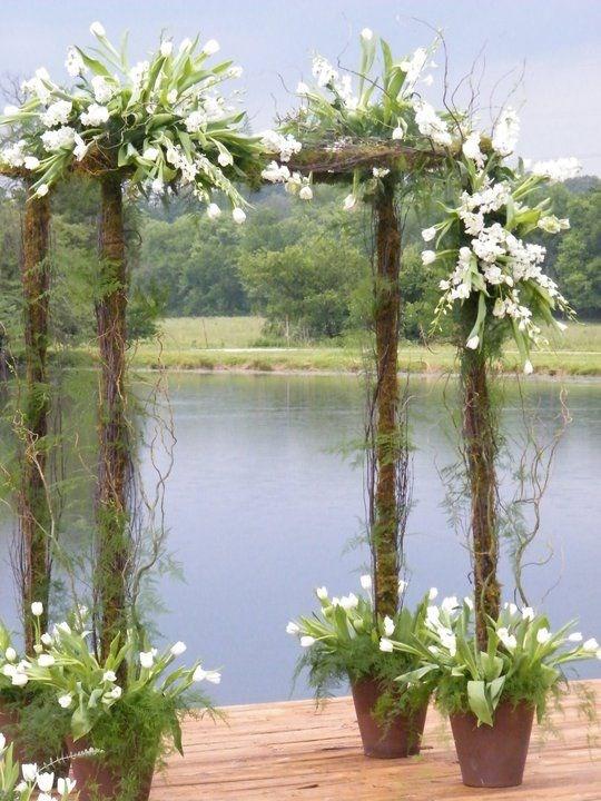 свадебная арка с тюльпанами
