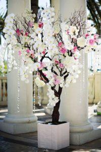 дерево орхидей