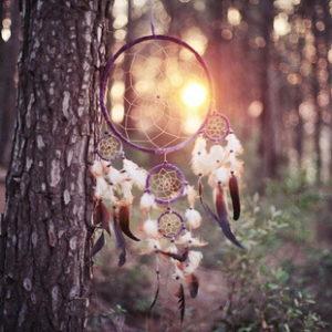 ловец снов свадтьа